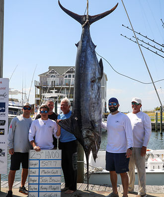 Marlin Gull - 507.7 lb. Blue Marlin from Day 2.