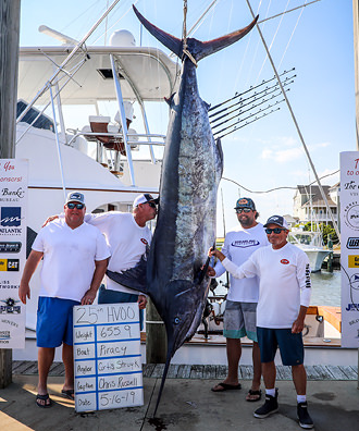 Piracy - 655.9 lb. Blue Marlin from Day 2.