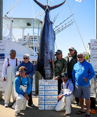 Release - 574.5 lb. Blue Marlin from Day 3.